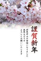 桜の花年賀状